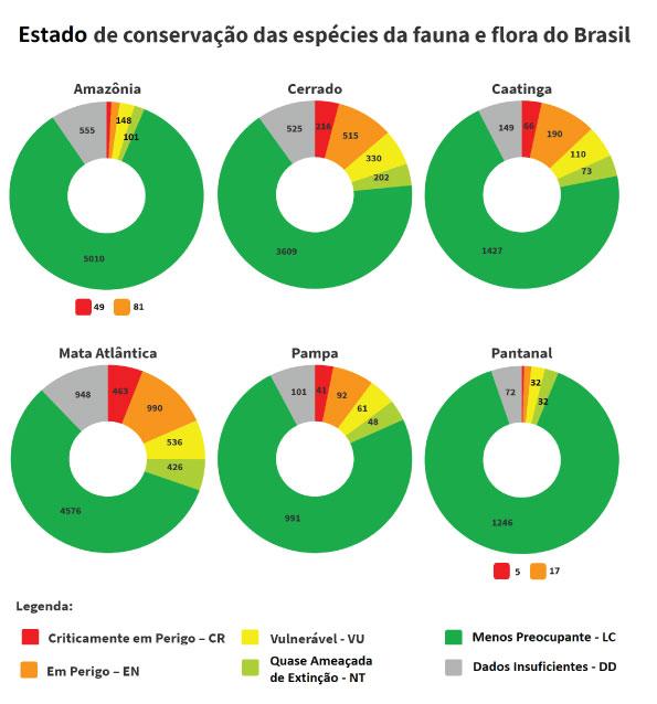 Pesquisa 'Contas de Ecossistemas: Espécies Ameaçadas de Extinção no Brasil',Contas de Ecossistemas: Espécies Ameaçadas de Extinção no Brasil,Espécies Ameaçadas de Extinção no Brasil,fauna,flora,fauna ameaçada de extinção,flora ameaçada de extinção,biomas